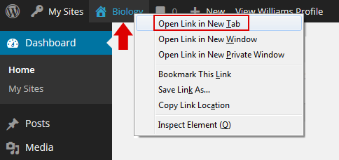 Right click on site name to open in a new tab.